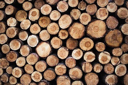 Firewood, Gardening, Cut, Sawn Timber, Slice
