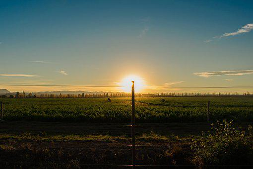 Sunset, Sun, Wiring, Sky, Red Sun, Field, Horizon