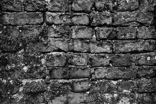 Black White, Wall, Dark, Brick, Brick Wall, Old, Moss