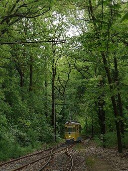 Tram, Rahnsdorf, Woltersdorf, Nostalgic, Transport