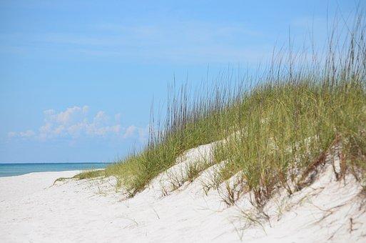 Sand, Beach, Nature, Grass, Sand Dune, Vacation, Relax