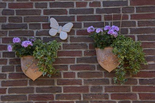 Deco, Hauswand, Flower, Wall, Flower Box, Stone Wall