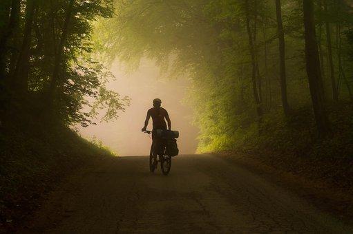 Bike, Foggy, Cyclist