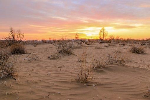 Desert, Sand, Yellow Sand, Sky, Landscape, Journey