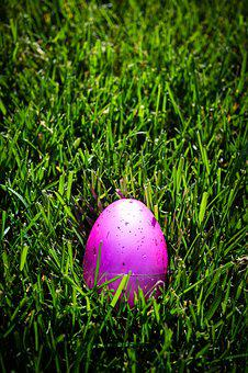 Egg, Pink, Green, Grass, Easter, Spring, Holiday