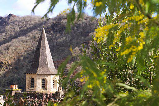 Conques, Mimosas, Flower, Yellow, Medieval, Village