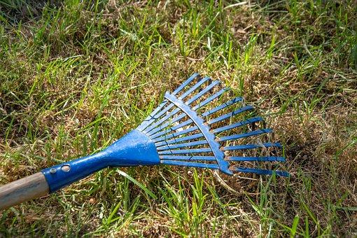 Leaves Broom, Raking Leaves, Computing, Garden