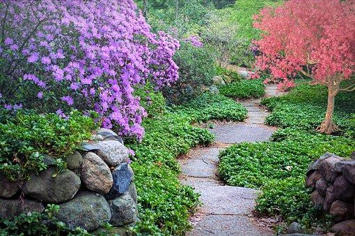 Spring, Flowering Trees, Path, Pathway, Walk, Nature