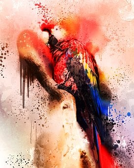 Bird, Colorful, Macaw, Red, Blue, Spray, Painting
