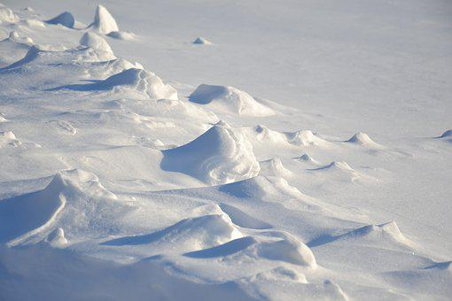 Winter, Field, Snow, Snowy Field, Snowdrifts, Surface