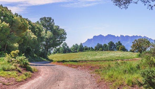 Path, Trees, Trail, Nature, Landscape, Field, Tourism