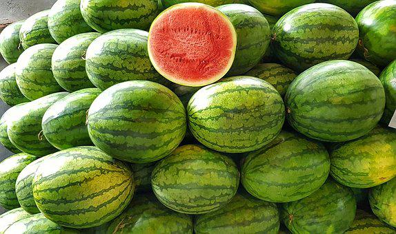 Watermelon, Melon, Red, Juicy, Fresh