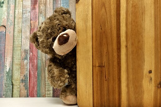 Teddy, Teddy Bear, Soft Toy, Bears, Stuffed Animals