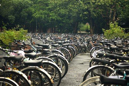 Bicycle, University, Bike, Iron Horse