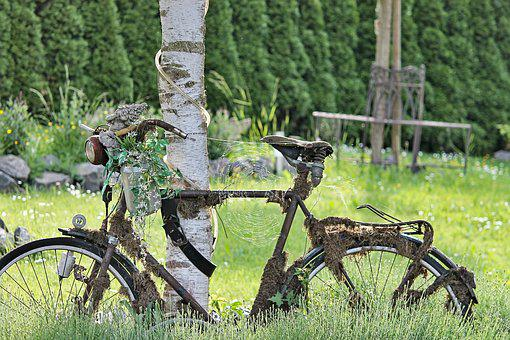 Bike, Rusty, Overgrown, Decoration, Spider Webs, Old