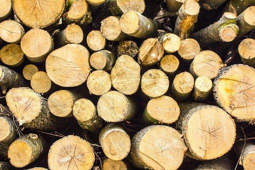 Wood, Tree, Nature, Log, Woods, Forest, Make Wood