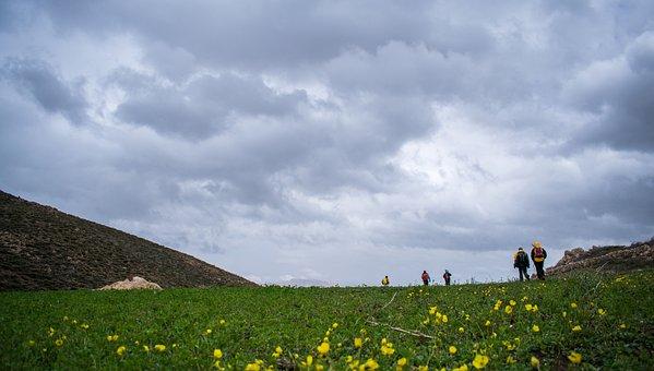 Landscape, Cloud, Plain, Flowers, Mountain