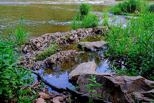 Bank, River, Water, Nature, River Landscape, Landscape