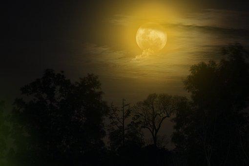 Moon, Night, Nightshoot, Moonlight, Landscape