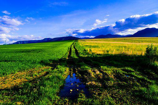 Puddle, Grass, Meadow, Mud, Field, Sky, Mountains