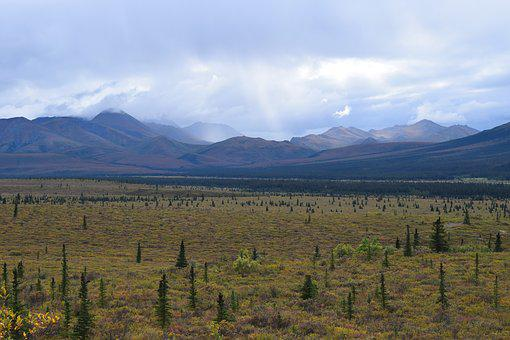 Denali National Park, Alaska, Teklanika, River, Valley