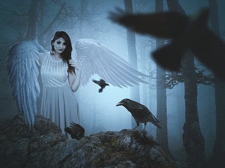 Evil, Devil, Crow, Black, Demon, Mystery, Dark