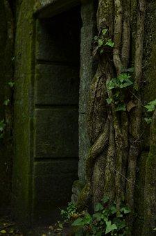 Nature, Ruins, Green, Galicia, Past, Dacova