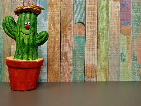 Cactus, Straw Hat, Face, Funny, Cute, Funny Face