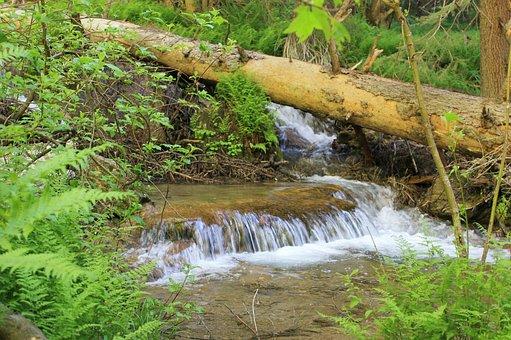 Waterfall, Stream, Cascade, Clean, Mountain, Natural