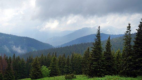 The Carpathians, Ukraine, Mountains, Landscape, Nature
