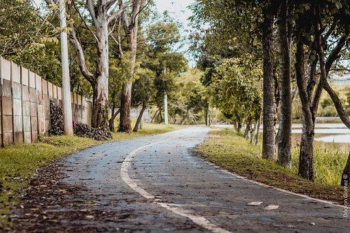 Path, Nature, Landscape, Spain, Road, Bridge, People