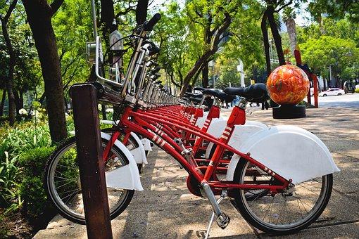 Bicycles, Park, Cdmx, Tourism, Bike, Cyclist, City