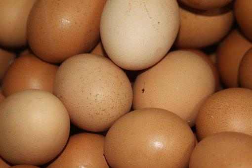 Egg, Chicken