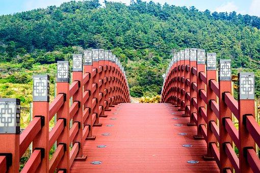 Bridge, Trees, Nature, Landscape, Forest, Wood, Color