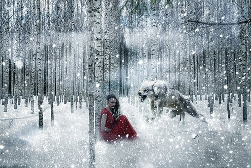 Little Red Riding Hood, Wolf, Forest, Snow, Trees