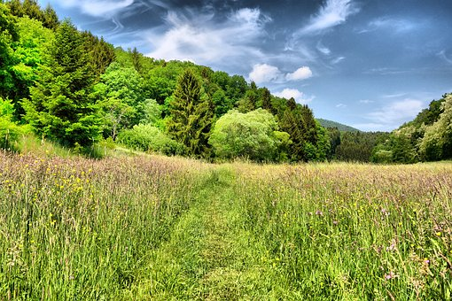 Green, Landscape, Nature, Mood, Clouds, Hdr Photography