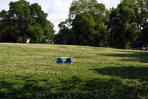 Summer, Grass, Seat, Outdoors, Green, Relax, Nature