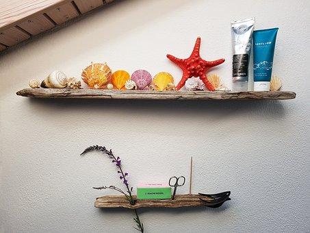 Bad, Shelf, Drift Wood, Mussels, Snails, Deco, Scissors