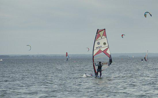 Sea, Sport, Water Sports, Windsurfing, Board, Sails