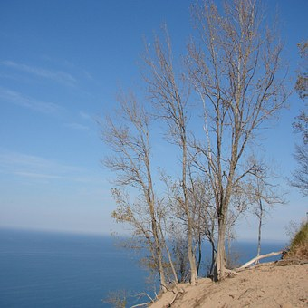 Tree, Bare, Fall, Beautiful, Sand, Water, Michigan