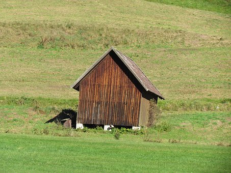 Hut, Meadow, Clay Valley, Baiersbronn, Black Forest