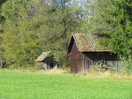 Clay Valley, Black Forest, Hut, Cottages, Meadow, Green
