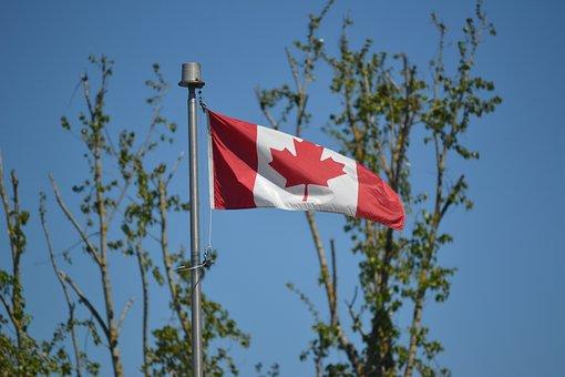 Canadian Flag, Flag, Maple Leaf, Trees