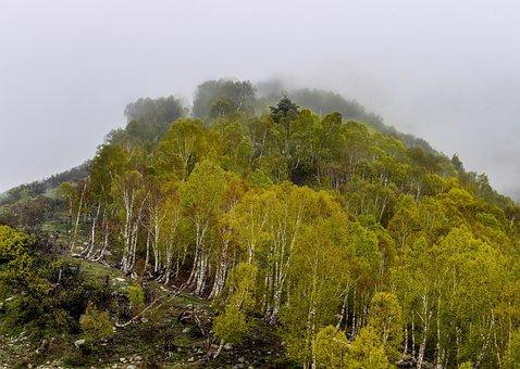 Jammu, Kashmir, Mou, India, Mountain, Travel, Himalaya