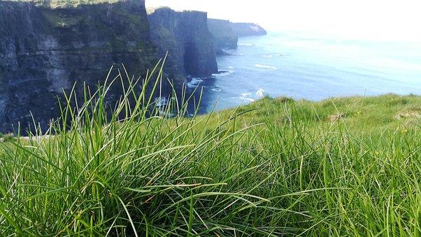 Ireland, Grass, Cliffs, Nature, Summer, Landscape