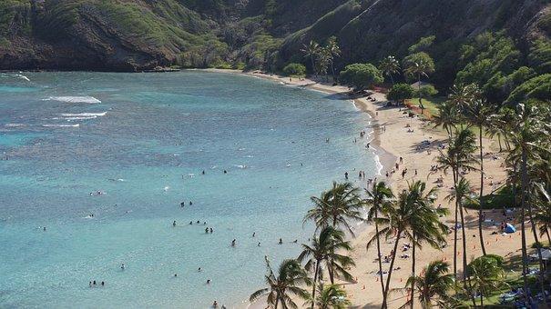 Beach, Ocean, Blue, Sea, Wave, Scenic, Seascape