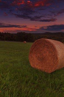 Sunset, Forest, Abendstimmung, Twilight, Autumn