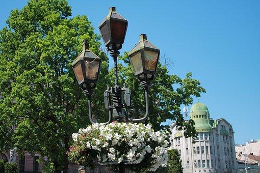 Lantern, Flowers, Sky, Street Lamp, Vintage Lantern