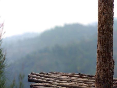 Nature, Mountains, Tree, Wood, Potrait, Bokeh