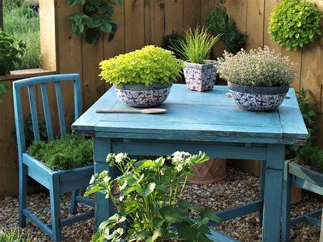 Table, Plants, Chair, Garden